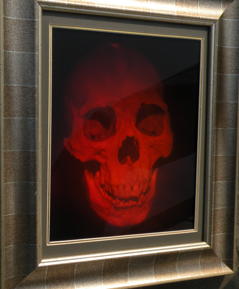 3d Medical Art 3d Art Holography With Wood